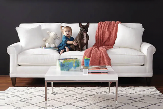 Kid proof and pet proof furniture with high performance fabric